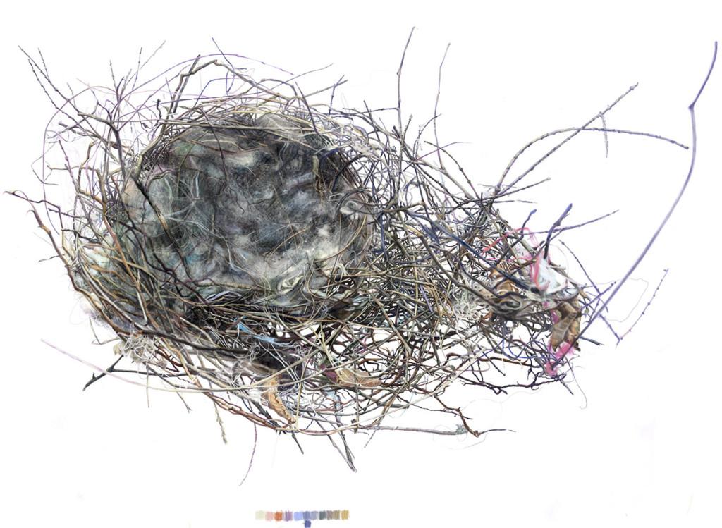 large-kari-nest